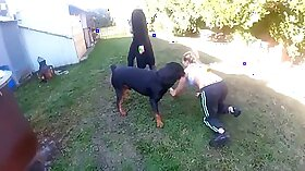 Brutal mistress dominates a skinny then fucks his lead pal hard